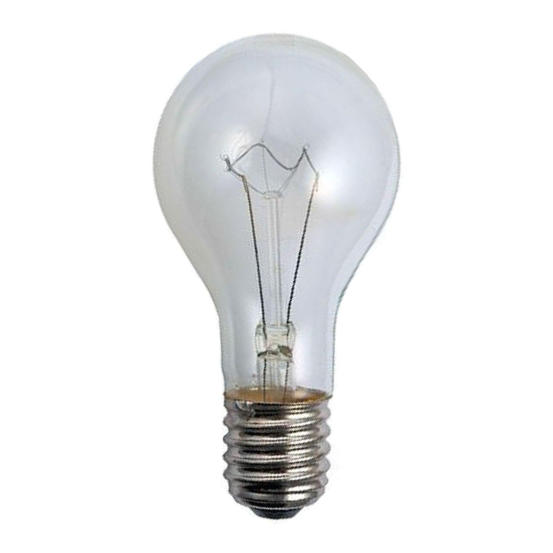 Standard Incandescent Bulb Clear E40 500W 230V