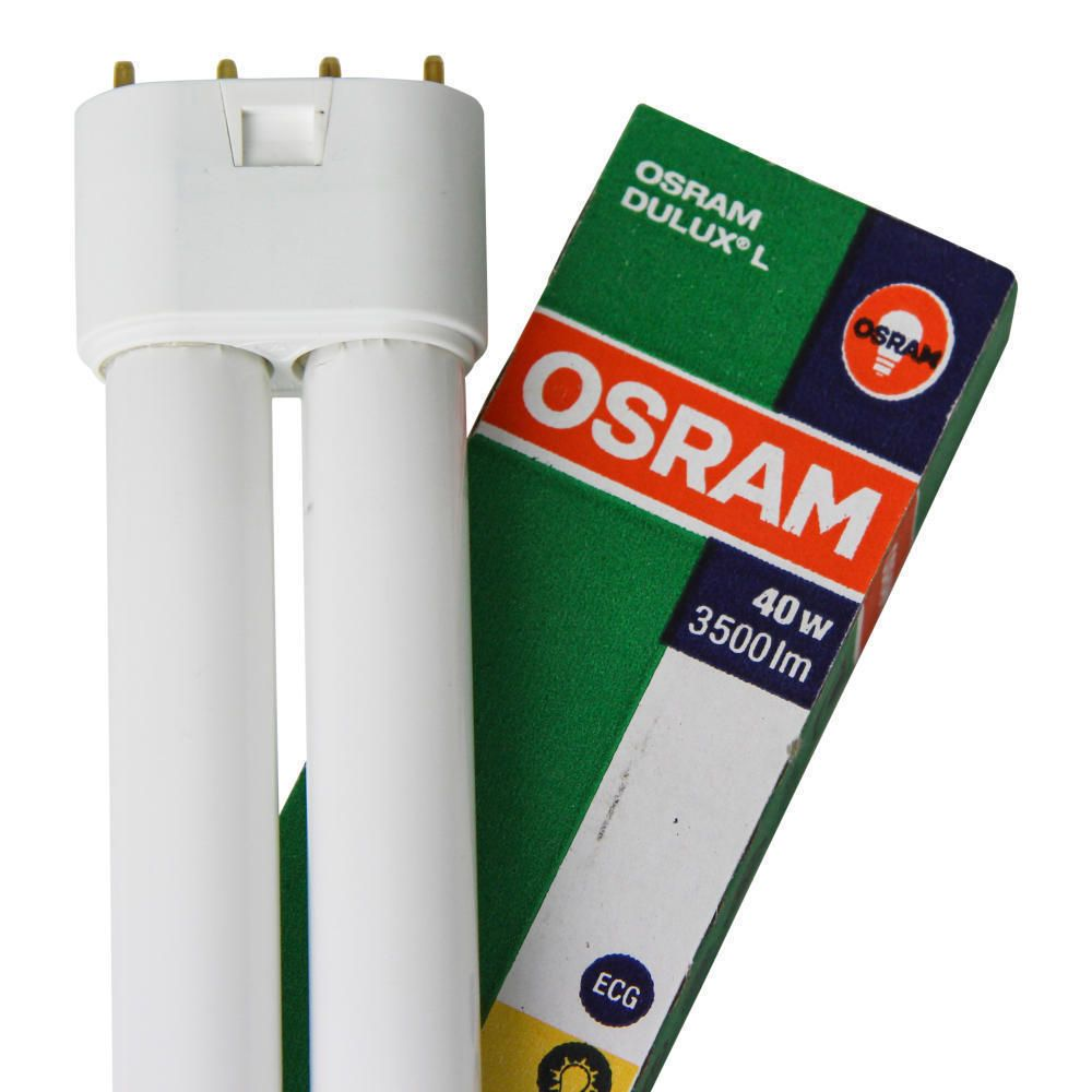 Osram Dulux L 40W 830 | Blanc Chaud - 4-Pins