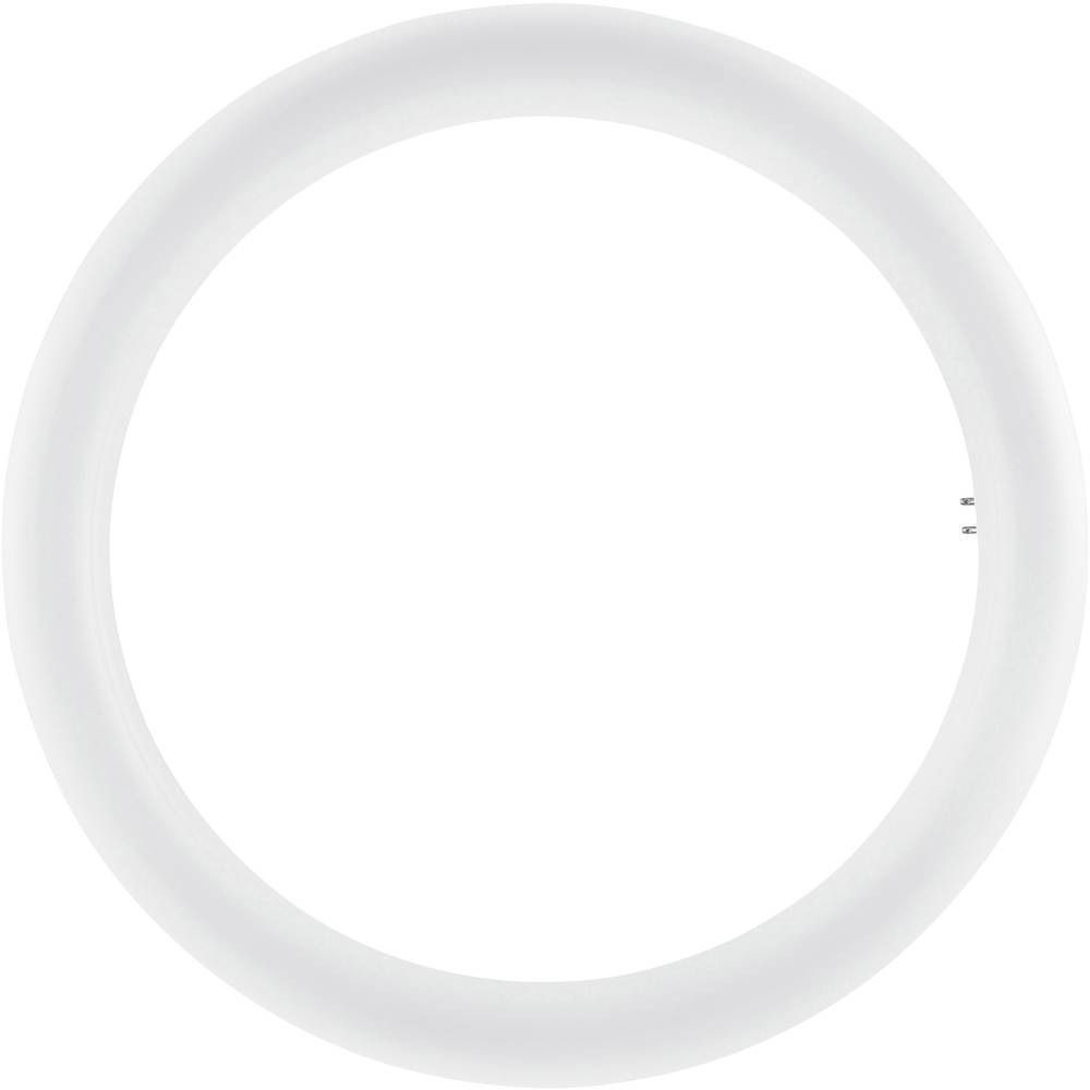 Osram SubstiTUBE T9 Circular EM MAINS G10Q 20W 840 | Cool White - Replaces 32W