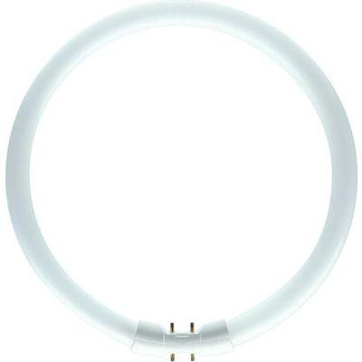 Runde Leuchtstoffröhre
