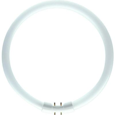 Fluorescent tubes circular