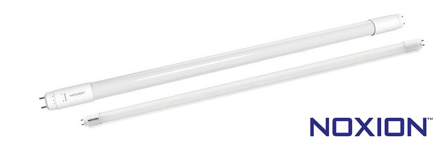 Noxion-LED-Röhren